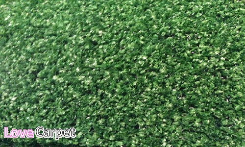 Meadow and Meadow (Artificial Grass)
