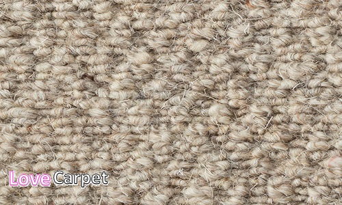 Romeo-Walnut and Classic Wool Berber