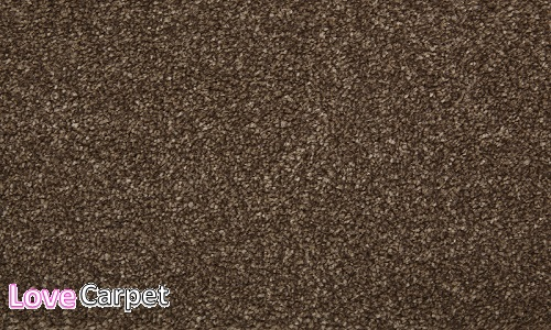 Taupe from the Sumptuous range